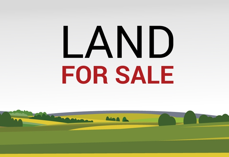 50 CENT PLOT FOR SALE IN PANDALAM