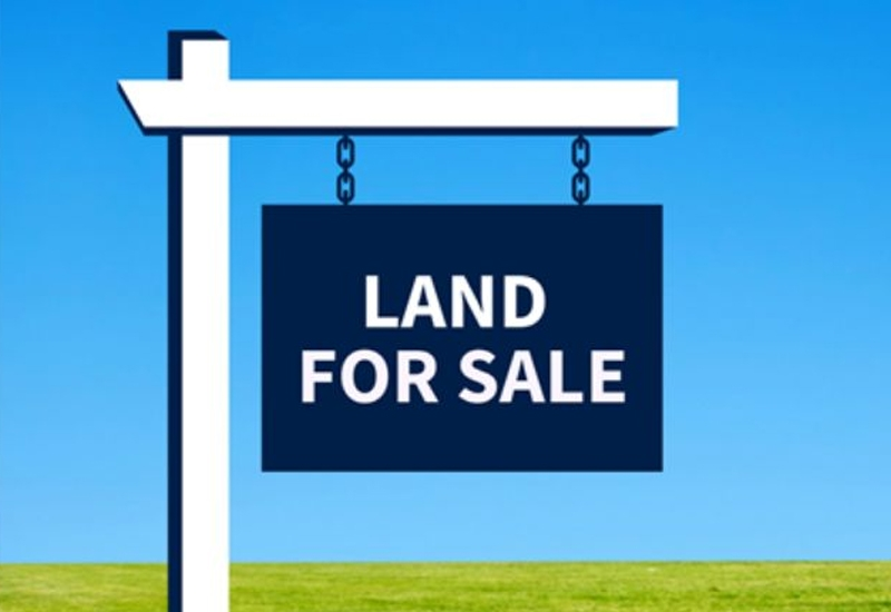 PLOT WITH HOUSE FOR SALE IN ARANMULA
